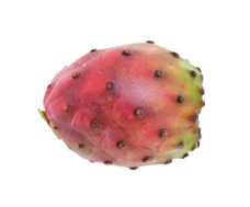 Prickly Pear Nutrition